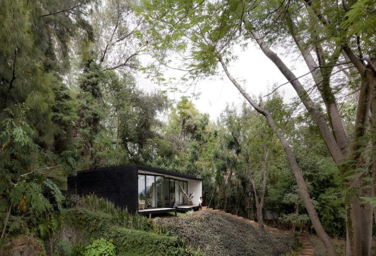 Contemporary cabin in Mexico middle of forest