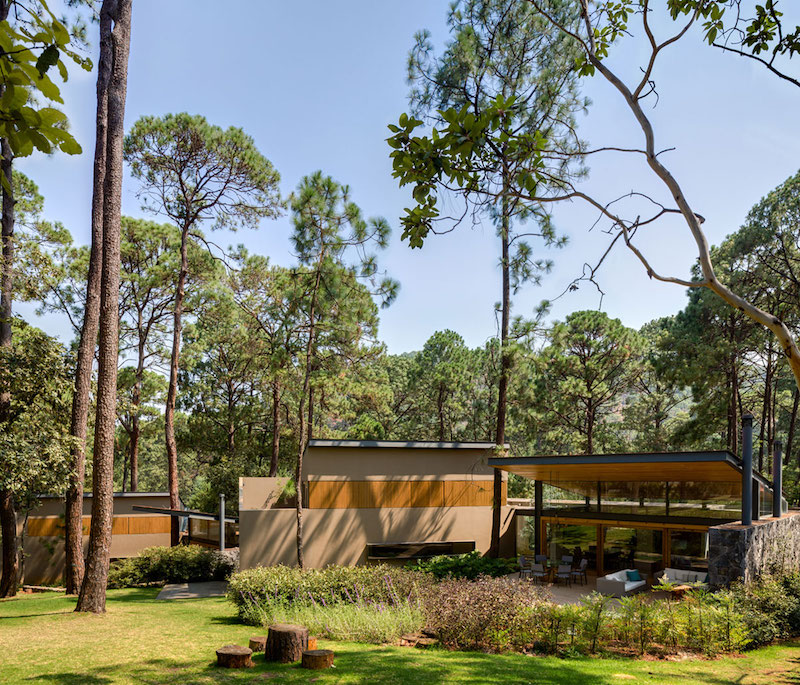Five Houses condominium surrounded by forest