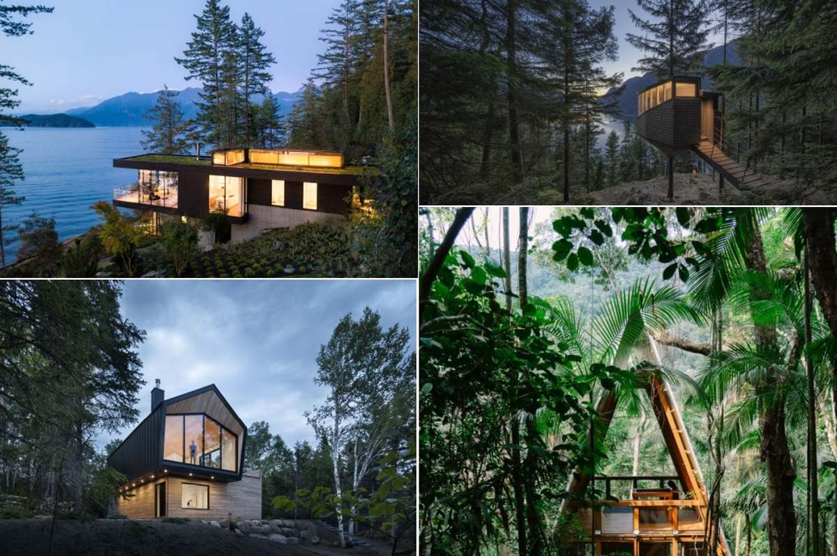 Modern forest houses