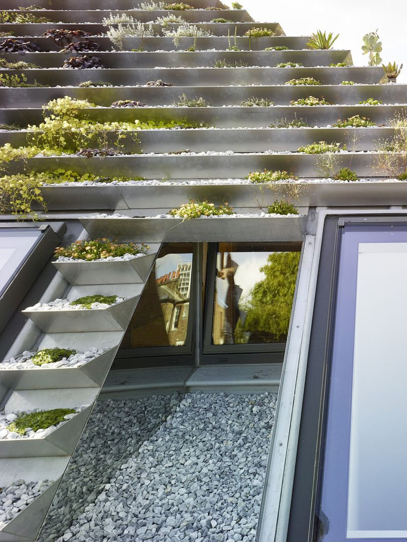 Garden House roof and window