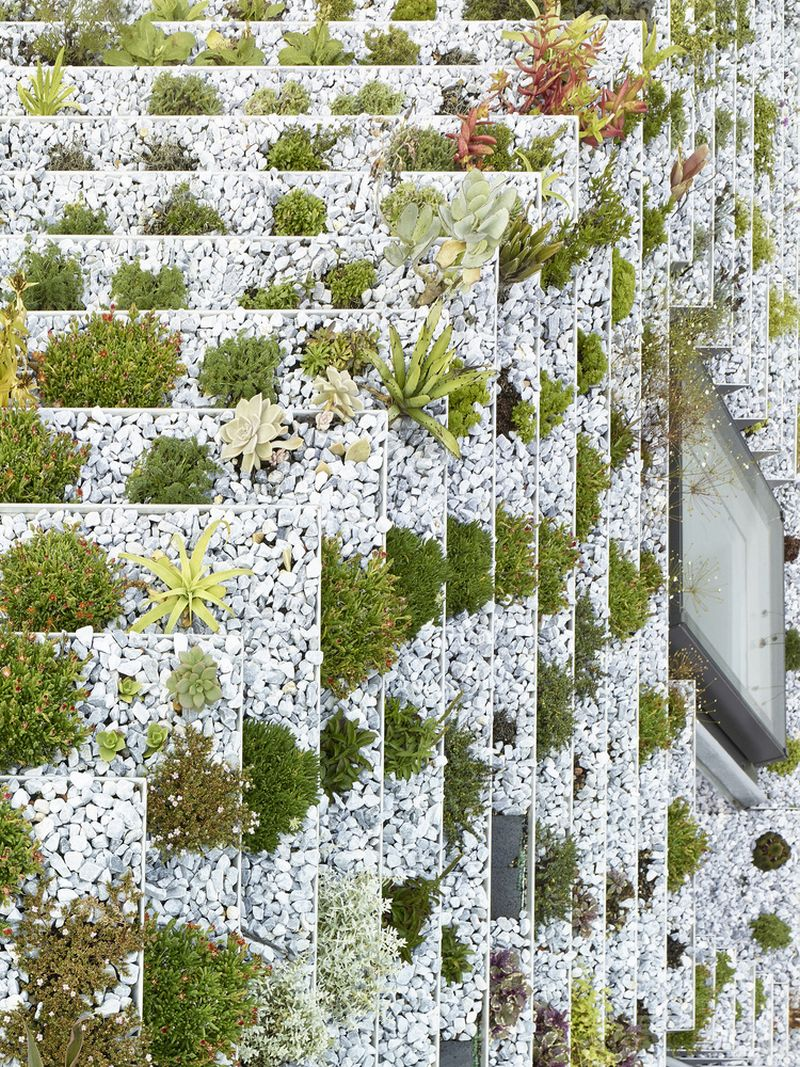 Garden House roof seen from above