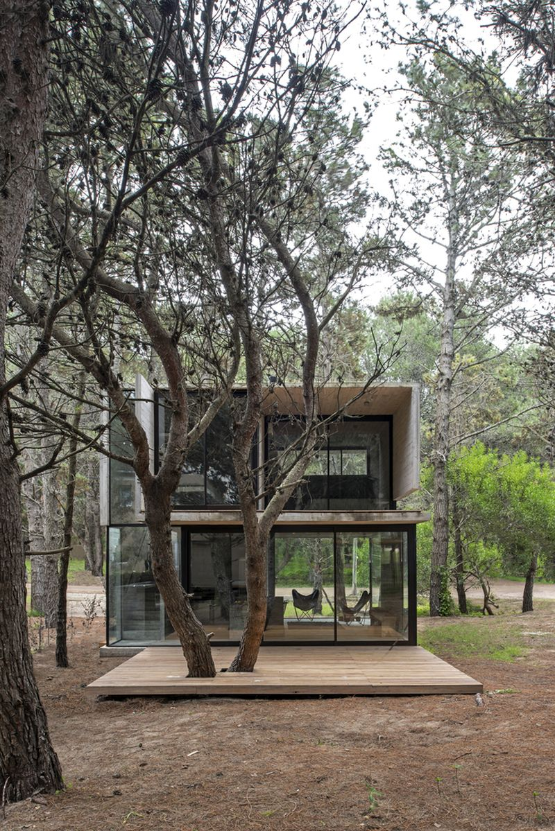 H3 House deck and trees