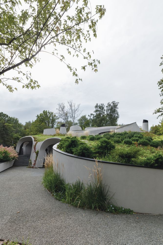 There's a lot of greenery involved in this project, some of which envelops the house quite literally