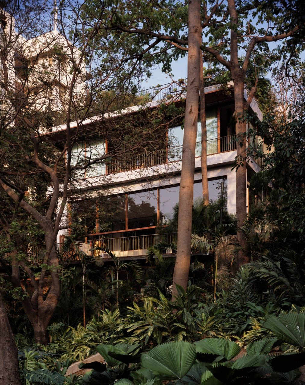 House on Pali Hill Design