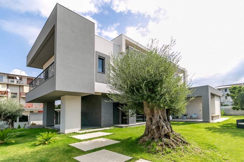 The site on which the house stands preserves a series of citrus and olive trees which have become part of the landscape