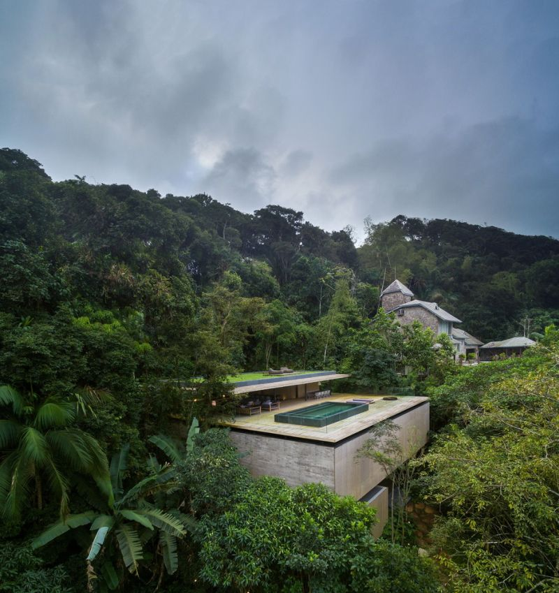 The Jungle House surrounded by vegetation
