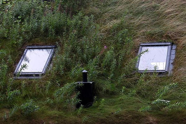 Norway Green Roofs (12)
