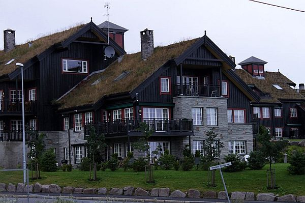 Norway Green Roofs (10)