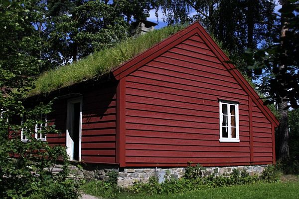 Norway Green Roofs (9)