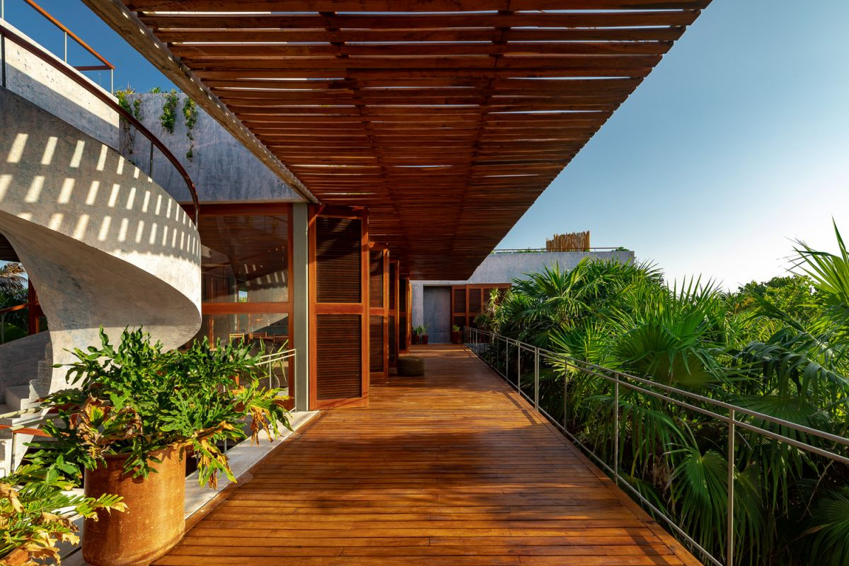 The rich wood tones contrast with the light concrete and highlight the tropical design of the house