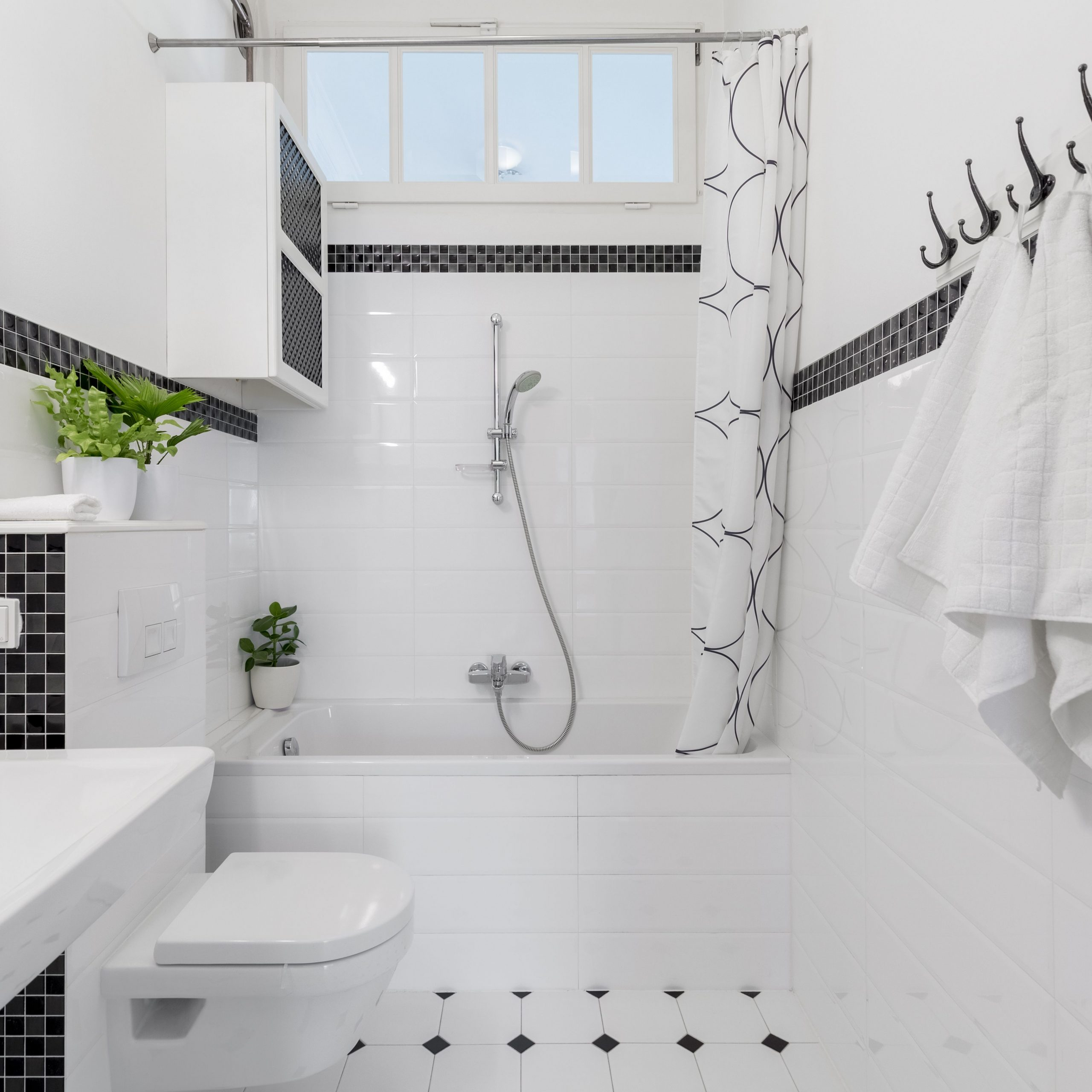 Black and White Accents