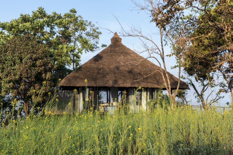 The villa is surrounded by grass and trees on all sides and even welcomes nature inside of it