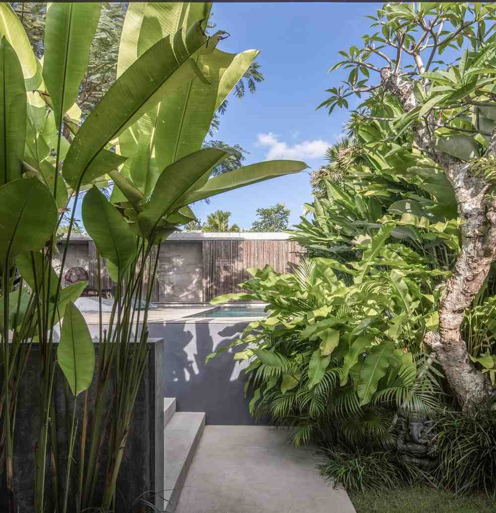 There's lots of vegetation and greenery in the two gardens and the areas surrounding the house