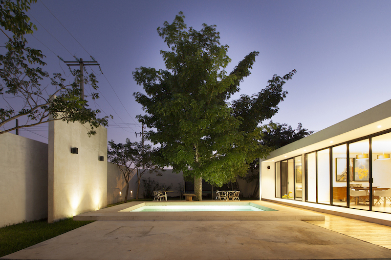 A large trees flanks the backyard, offering shade for a cozy lounge area by the pool
