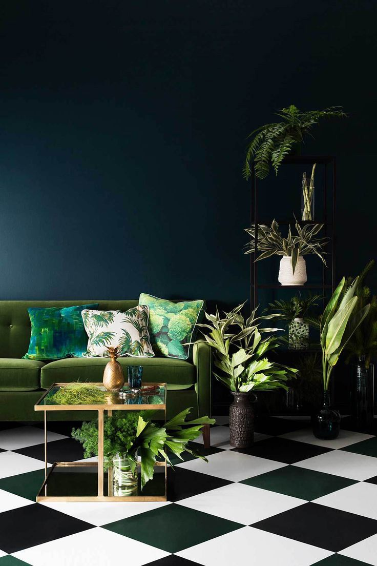 The dark backdrop sets a mysterious and dramatic ambiance that pairs nicely with the greenery