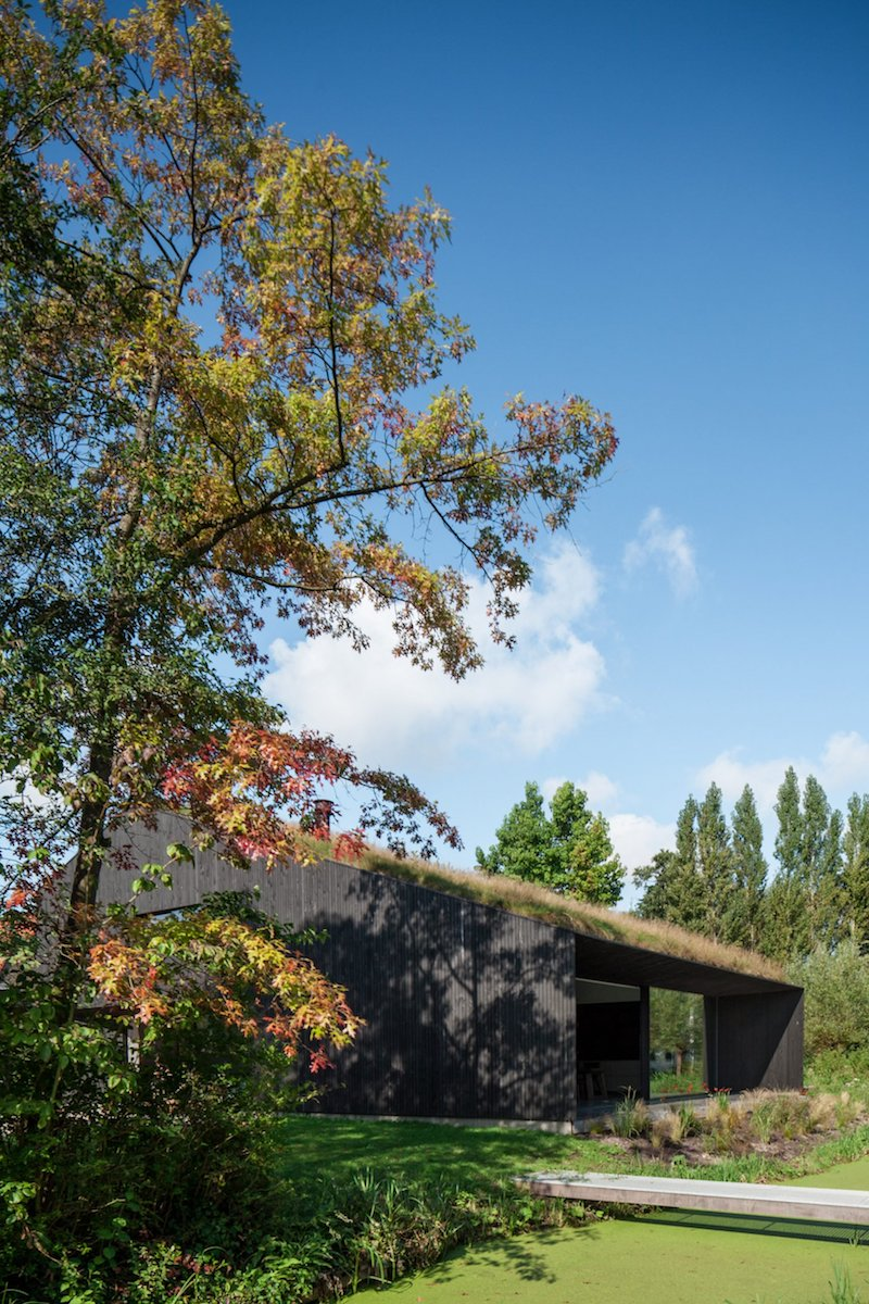 The turf roof is an unexpected feature, an element which helps to connect the house to its green surroundings