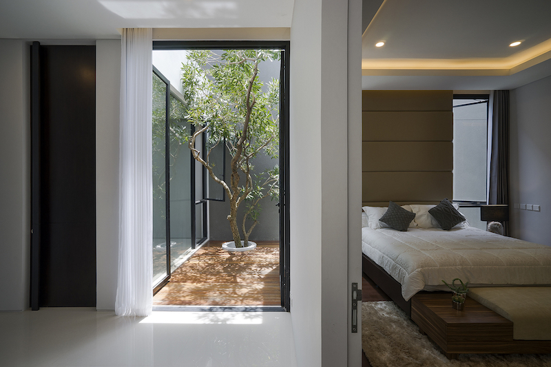 The bedroom has access to a tiny courtyard area too. It's adjacent to a space that has a tree growing through it