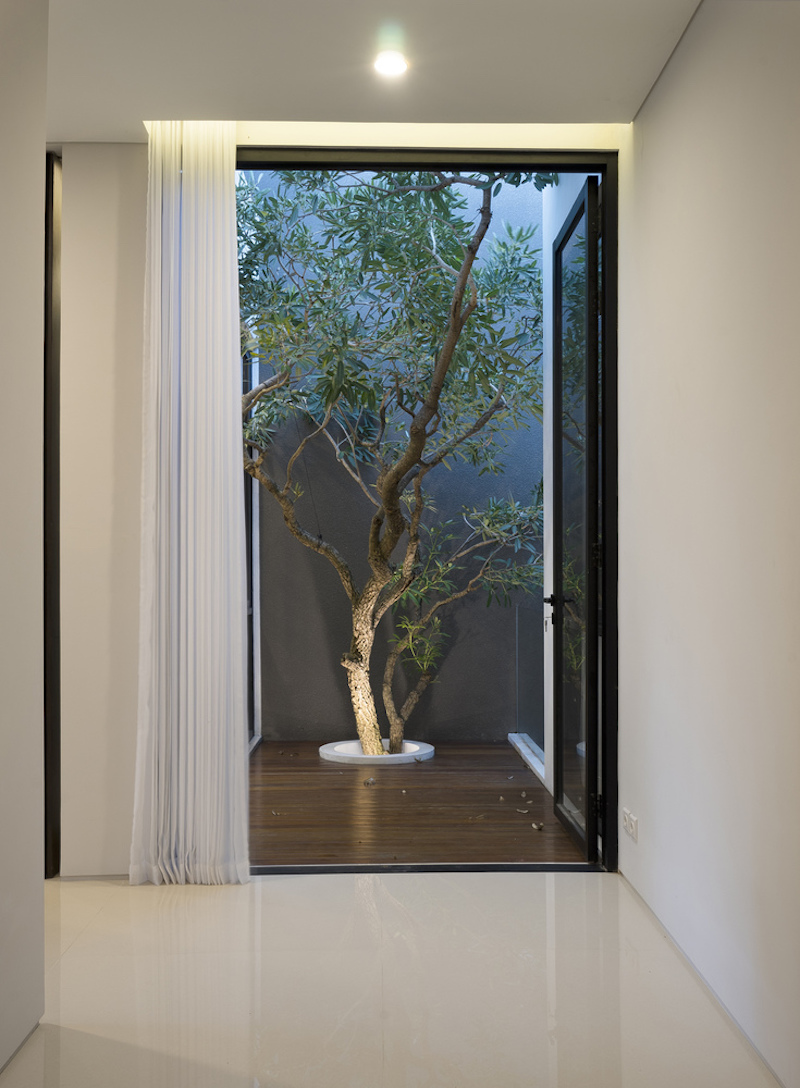 The tree pierces the floor and is beautifully and quite naturally integrated into the design of the house
