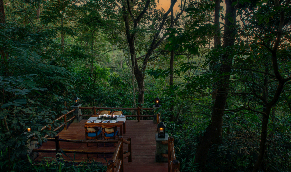 This raised deck offers a gorgeous 360 degree view of the forest