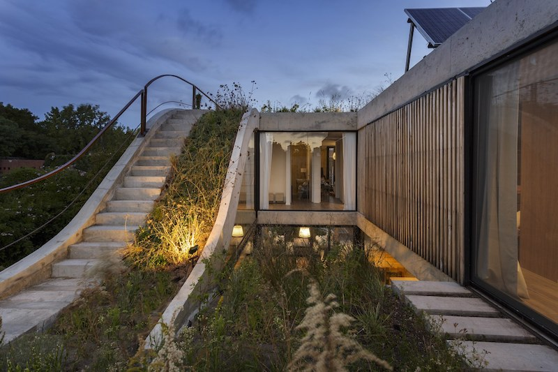 The roof of the house is a garden, making it seem like nature is taking over the architecture