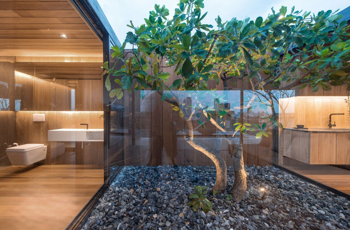 the internal courtyard has a lovely little tree at the center and makes the entire house look natural