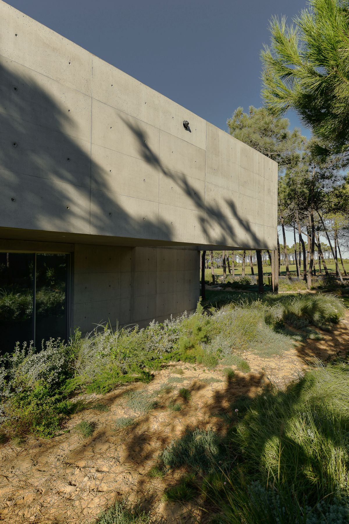 The natural landscape plays a role in the design.