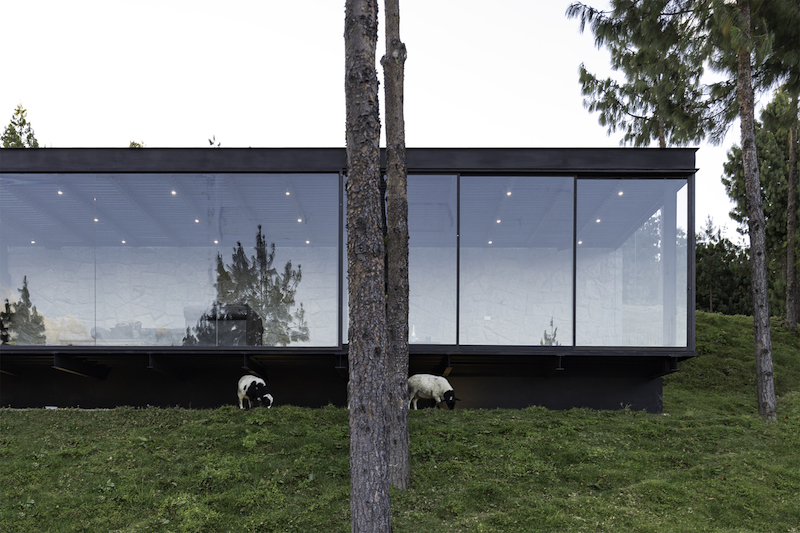 The glazed facade lets natural light and panoramic views inside, establishing a connection with the valley